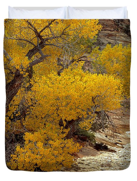 Zion National Park Autumn Duvet Cover