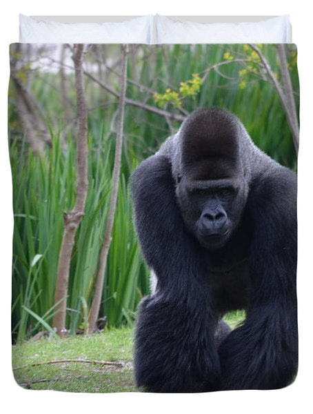 Zootography Of Male Silverback Western Lowland Gorilla On The Prowl Duvet Cover by Jeff at JSJ Photography