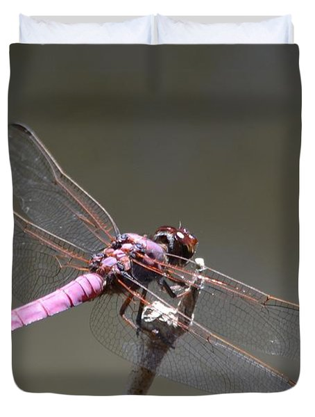 Zootography2 Pink Dragonfly Duvet Cover by Jeff at JSJ Photography