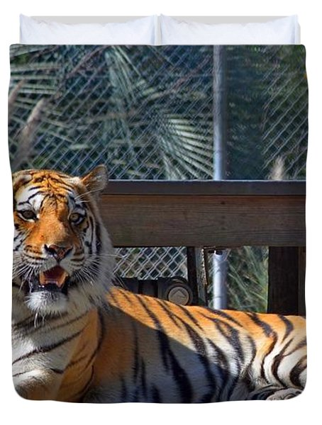 Zootography3 Tiger In The Sun Duvet Cover by Jeff at JSJ Photography