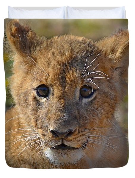 Zootography3 Zion The Lion Cub Duvet Cover by Jeff at JSJ Photography