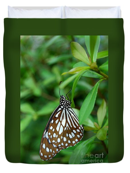 Duvet Cover featuring the photograph  Blue Tiger Butterfly by Eva Kaufman