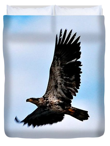 Duvet Cover featuring the photograph  Juvenile Bald Eagle by Peggy Franz