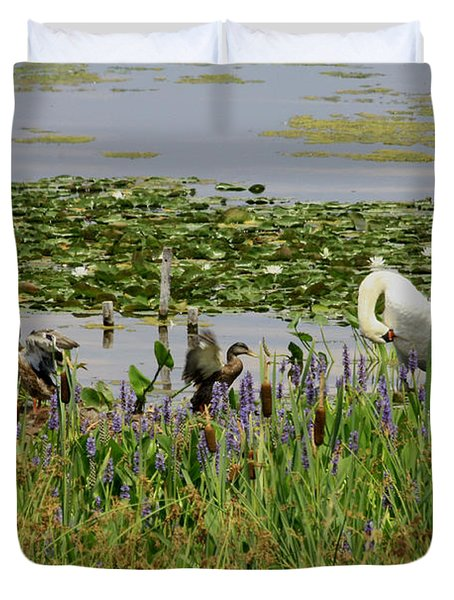 Swan And The Duck's Duvet Cover