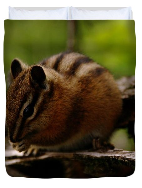 A Little Chipmunk Duvet Cover by Jeff Swan