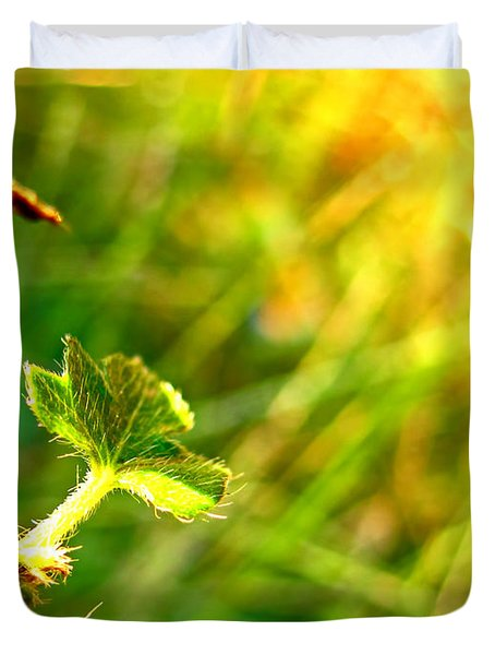 Duvet Cover featuring the photograph A New Morning by Debbie Portwood