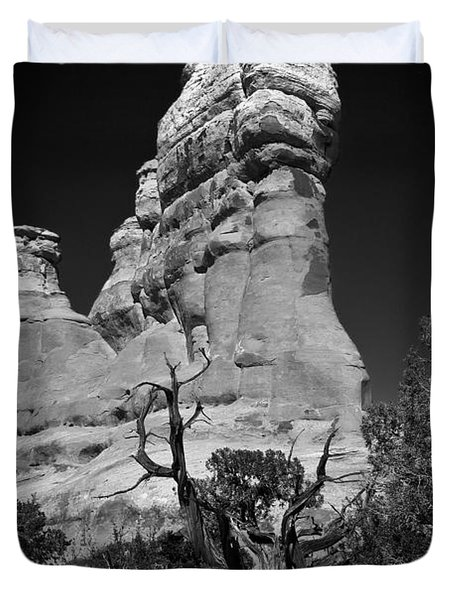 Arches National Park Bw Duvet Cover