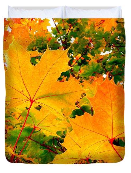 Autumn In British Columbia Duvet Cover