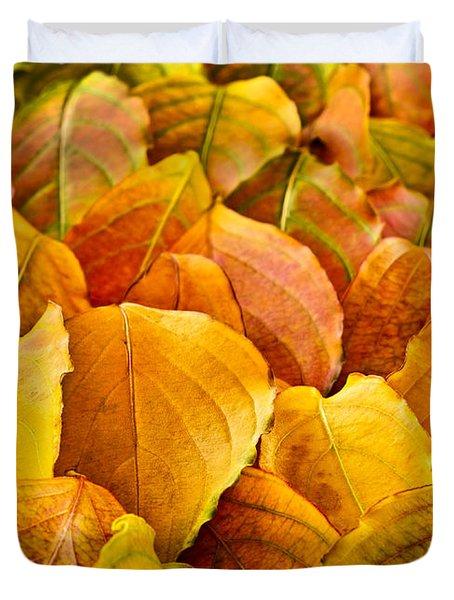 Autumn Leaves  Duvet Cover by Elena Elisseeva