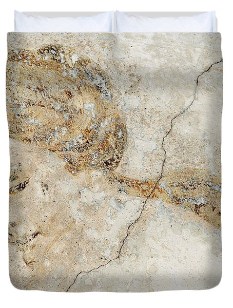 Baroque Mural Painting Duvet Cover by Michal Boubin