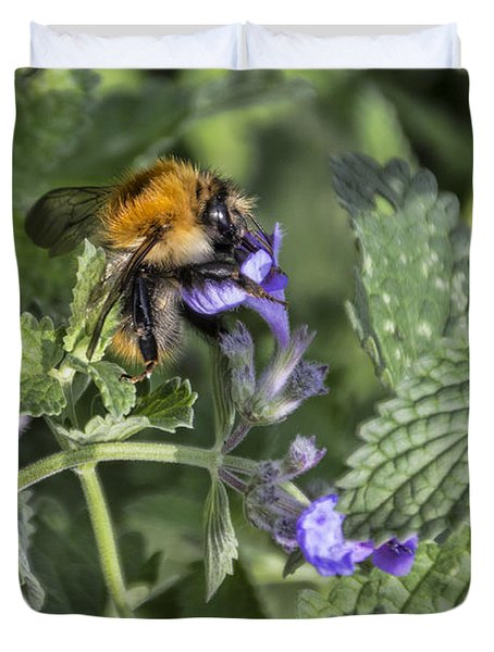 Duvet Cover featuring the photograph Bee by David Gleeson