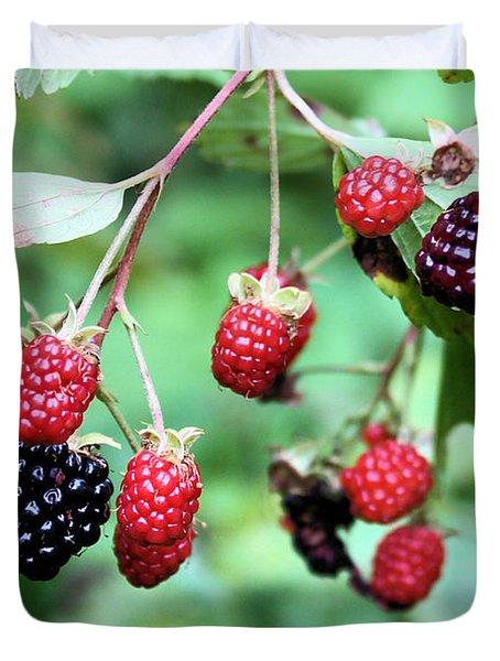 Blackberries Duvet Cover by Kristin Elmquist