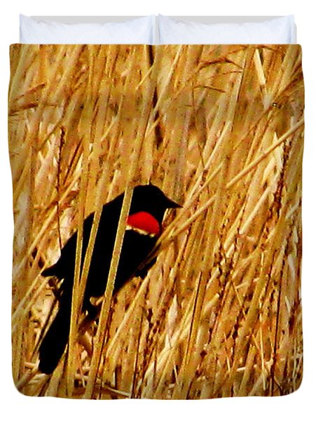 Blackbird In The Reeds Duvet Cover