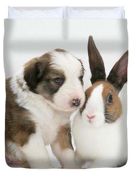 Border Collie Pup With Dutch Rabbit Duvet Cover by Jane Burton