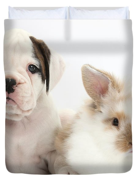 Boxer Puppy And Young Fluffy Rabbit Duvet Cover by Mark Taylor