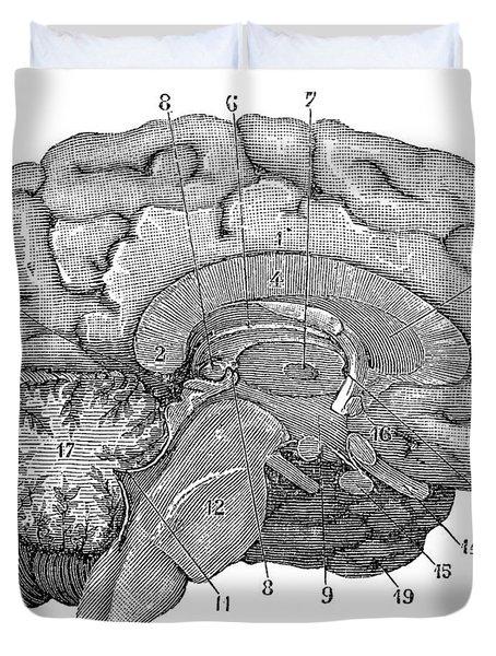 Brain Cross-section Duvet Cover