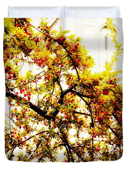 Branch Of Heaven Duvet Cover by La Rae  Roberts