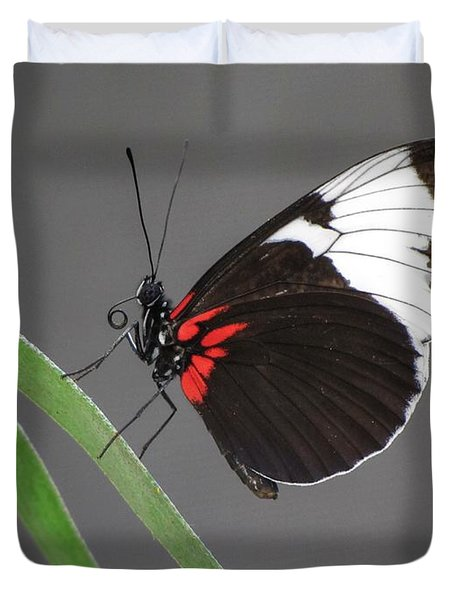 Duvet Cover featuring the photograph Butterfly  by Tam Ryan