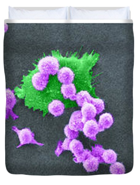 Cancer Cell Death Sequence, Sem Duvet Cover by Science Source