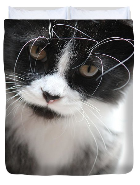 Cat In Chaotic Thought Duvet Cover