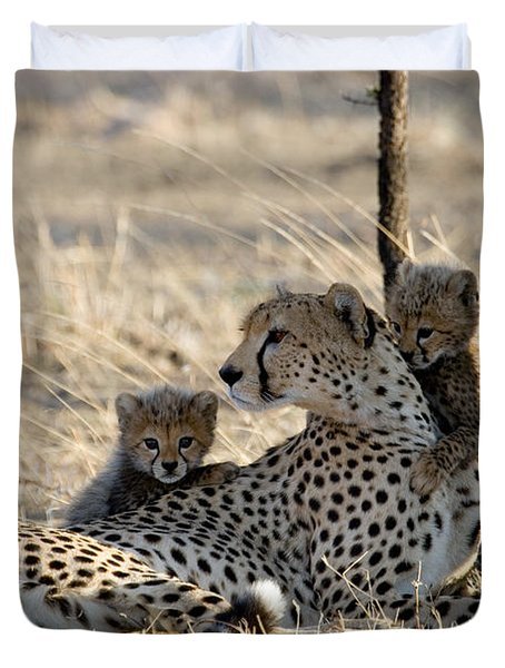 Cheetah Mother And Cubs Duvet Cover by Gregory G. Dimijian, M.D.