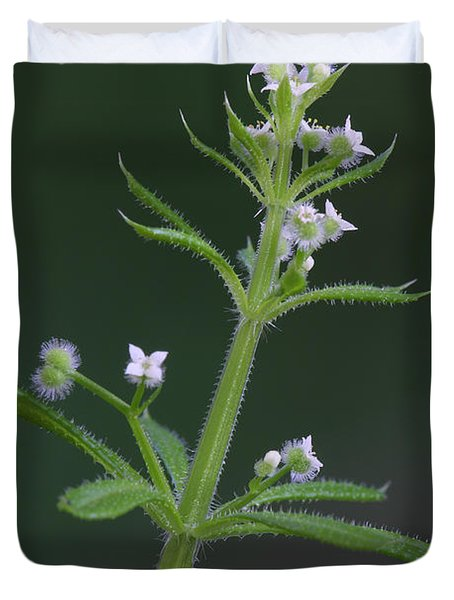 Duvet Cover featuring the photograph Cleavers by Daniel Reed