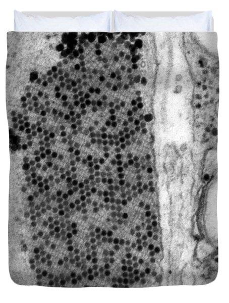 Coxsackie B3 Virus, Tem Duvet Cover