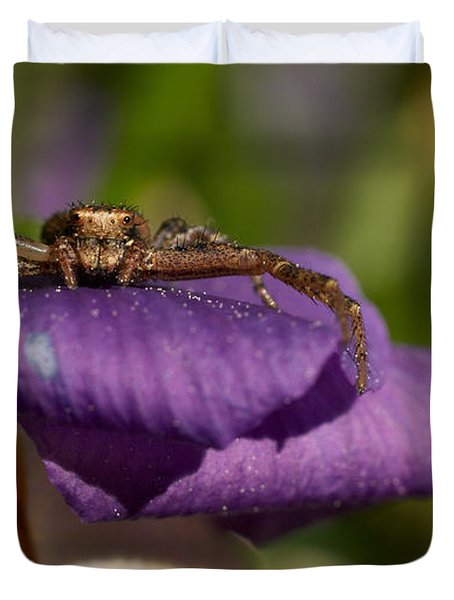 Crab Spider In A Violet Duvet Cover by Jouko Lehto