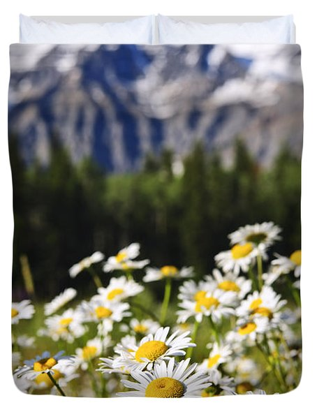 Daisies At Mount Robson Provincial Park Duvet Cover by Elena Elisseeva