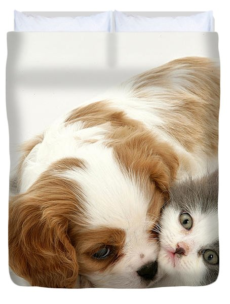 Dog And Cat Duvet Cover by Jane Burton