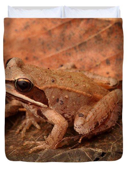 Eastern Wood Frog Duvet Cover by Ted Kinsman