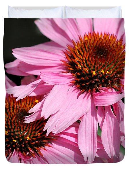 Echinacea Purpurea Or Purple Coneflower Duvet Cover by J McCombie
