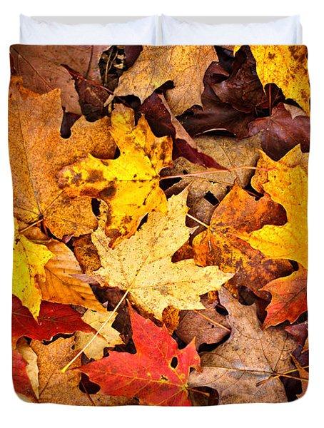 Fall Leaves Background Duvet Cover by Elena Elisseeva