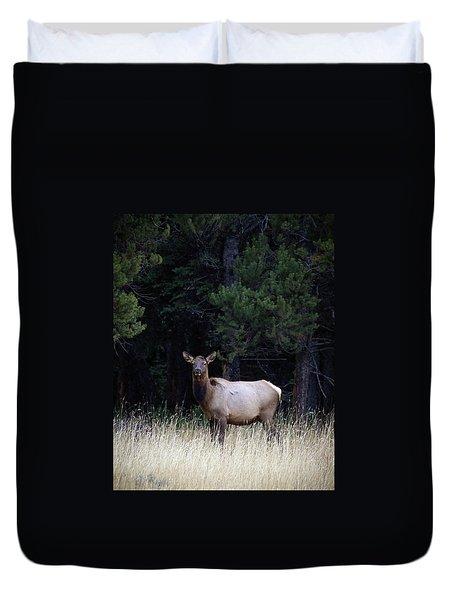 Forest Elk Duvet Cover by Steve McKinzie
