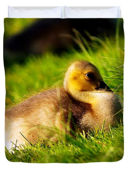 Gosling In Spring Duvet Cover by Paul Ge