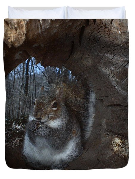 Gray Squirrel Duvet Cover by Ted Kinsman