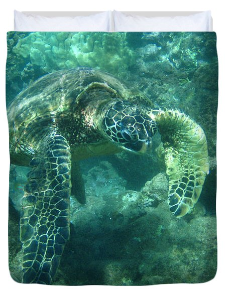 Green Sea Turtle Hawaii Duvet Cover by Bob Christopher