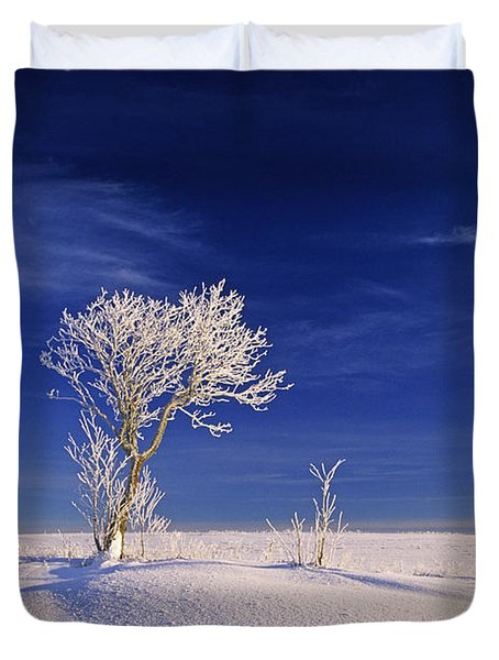 Hoar Frost On Trees, Bungay, Prince Duvet Cover by John Sylvester