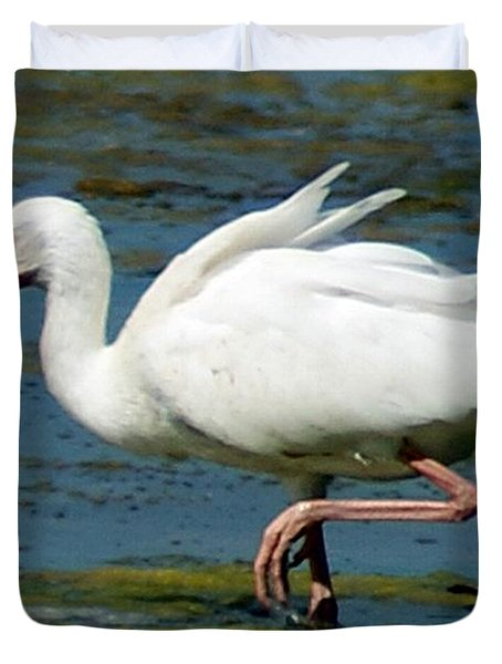 Ibis 2 Duvet Cover by Joe Faherty