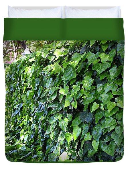 Ivy Wall Duvet Cover by Carol Groenen