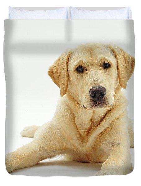 Labrador X Golden Retriever Puppy Duvet Cover by Jane Burton