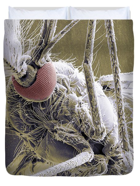 Male Mosquito Duvet Cover by Ted Kinsman