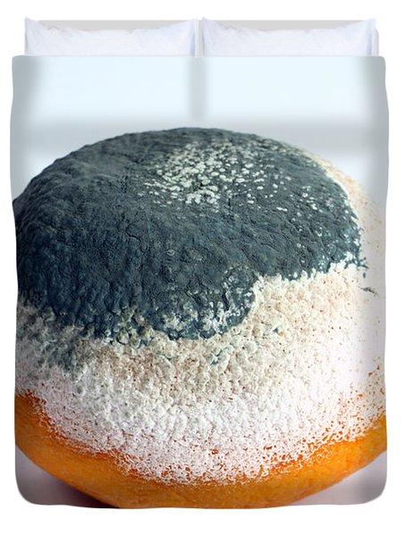 Moldy Orange Duvet Cover by Photo Researchers, Inc.