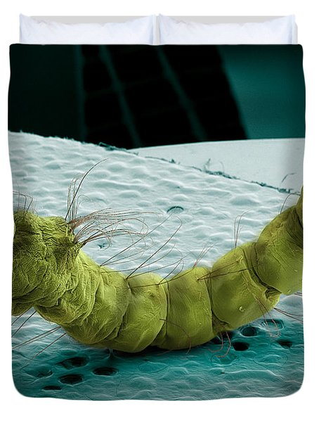 Mosquito Larva, Sem Duvet Cover by Ted Kinsman