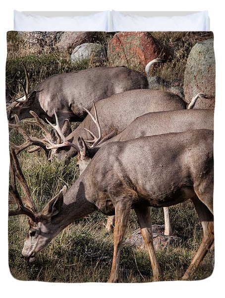 Mule Deer Bucks Duvet Cover