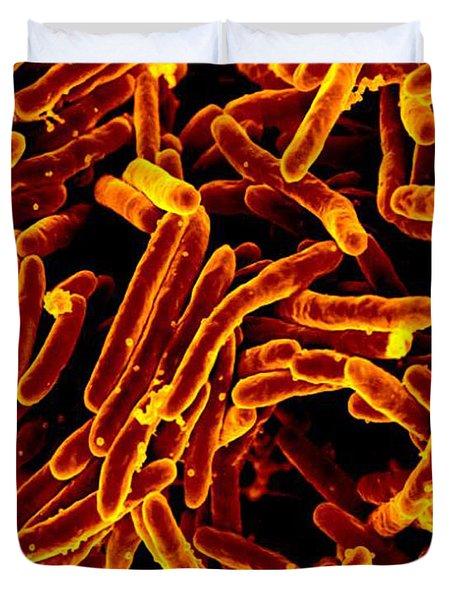 Mycobacterium Tuberculosis Bacteria, Sem Duvet Cover by Science Source