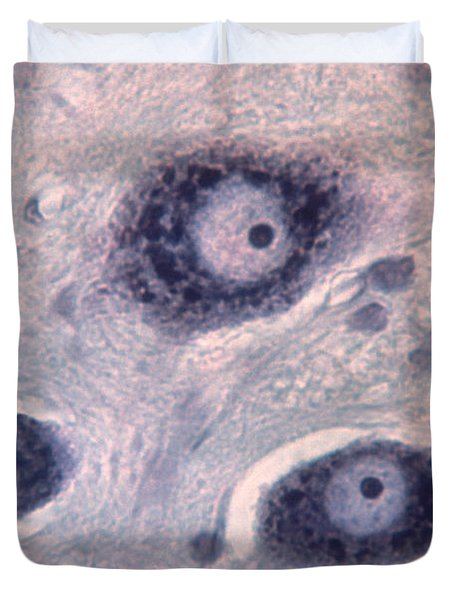 Neurons Duvet Cover