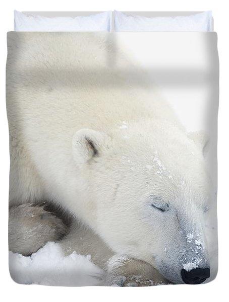 Polar Bear Ursus Maritimus Has His Eyes Duvet Cover by Richard Wear
