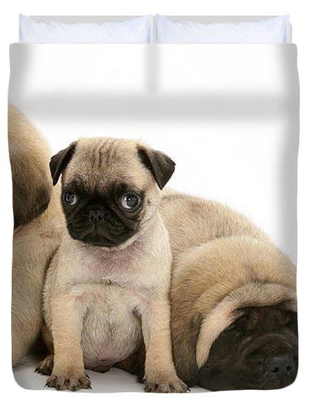 Pug And English Mastiff Puppies Duvet Cover by Jane Burton
