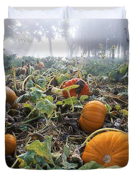 Pumpkin Patch, British Columbia Duvet Cover by David Nunuk